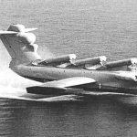 Dünyanın En Büyük Pelikanı İlk Uçuşunda
